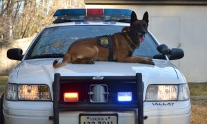 Foundation announces partnership with Spikes K9 Fund to equip VB Police Department K9's with ballistic vests